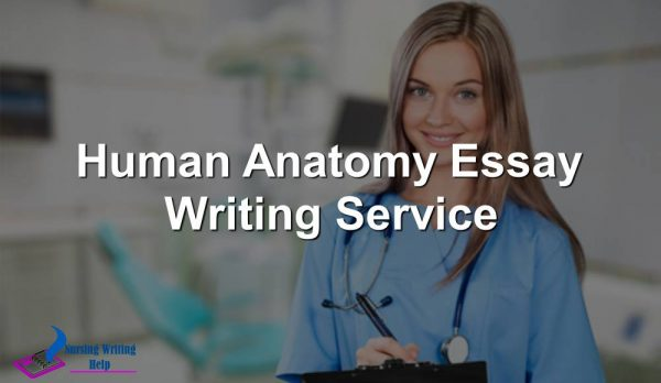 Human Anatomy Essay Writing Service
